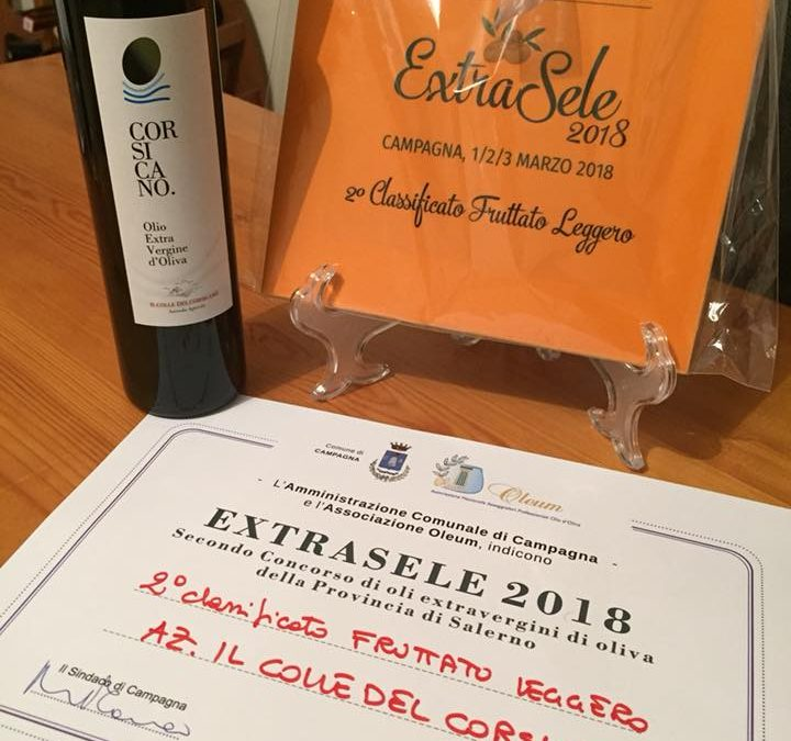 Secondo classificato al premio ExtraSele 2018