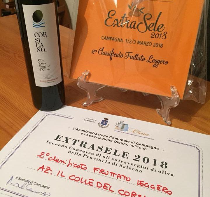 Secondo classificato al premio ExtraSele 2018
